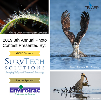 Annual Photo Contest 2018 winners