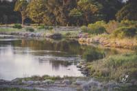 #savebartonpark