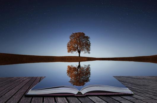Check Ya Self!!- A Look at Self-Reflection