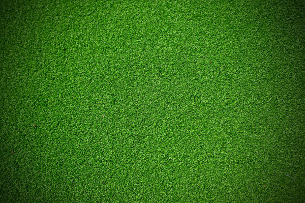 Artificial Turf Maintenance/ Cleaning/ Disinfecting