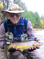 West Branch AuSable River Brown Trout