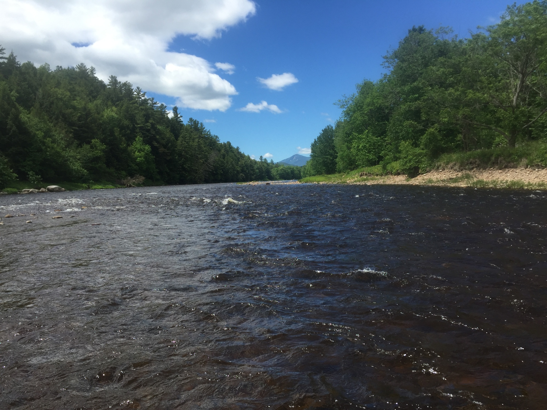 AuSable river down river frrm the town of Au Sable Forks