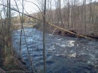 True Brook