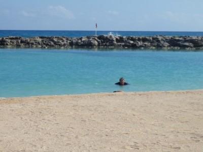 Aventura Palace Resort (Hard Rock Riviera Maya)