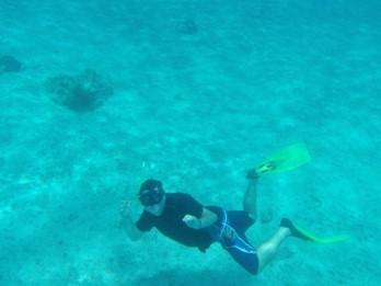 El Cid La Ceiba snorkeling