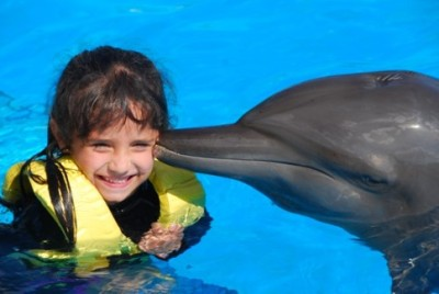 Swimming with Dolphins in Cancun   my daughter's birthday present!