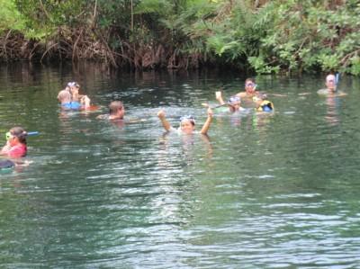 Cenote at Hacienda Tres Ríos Resort