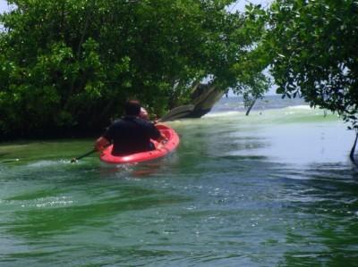 Kayaking at Hacienda Tres Rios Resort