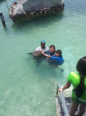 Swimming with the Nurse Sharks