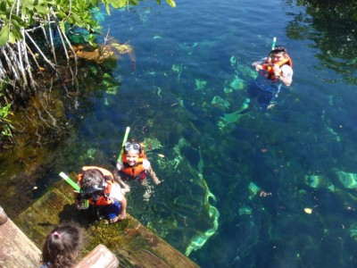 Cenote at Xpu-Ha Palace Resort (Bel-Air)