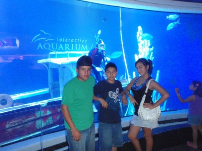 Cancun Interactive Aquarium at Plaza La Isla