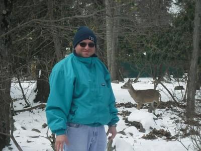 Deer at Split Rock Resort
