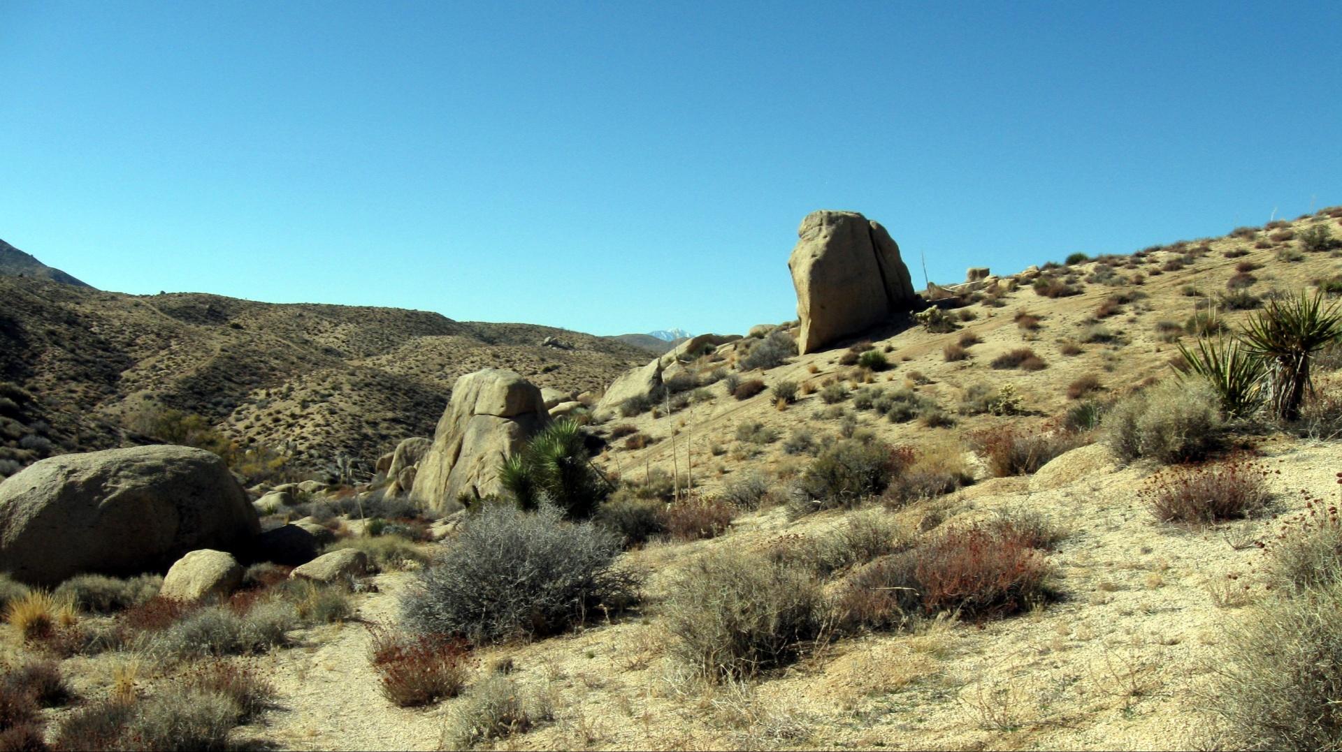 rock formations in Juniper Flats