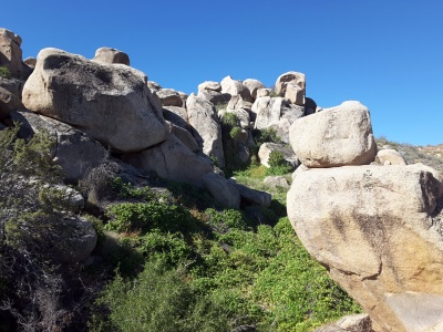 riparian area among rock formations