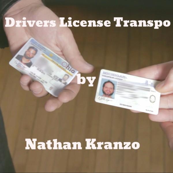 Drivers License Transpo (DLT) by Nathan Kranzo