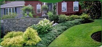 Landscaping and Mulch photo with cart and hostas