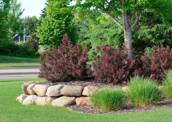 Branching Out specializes in Landscaping Services