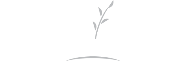 Branching Out Services logo specializing in tree, landscaping and property maintenance services