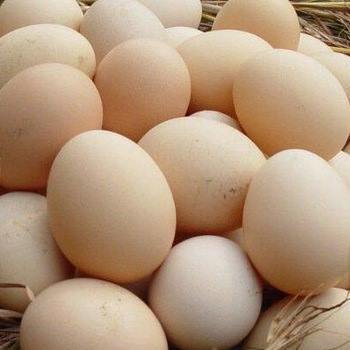 WHITE & BROWN EGGS