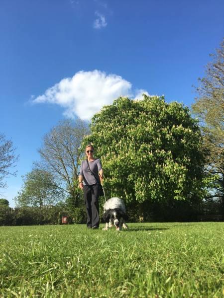 Find the right Dog Walker/Pet Carer for you