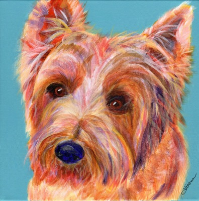 Sweet Terrier