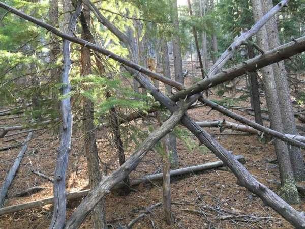 The Sasquatch Outpost