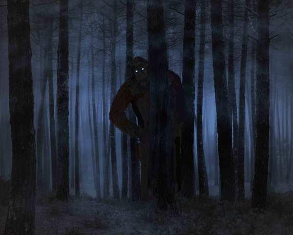 Hard to Believe Bigfoot Story