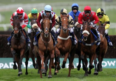 Horse Racing Money Management