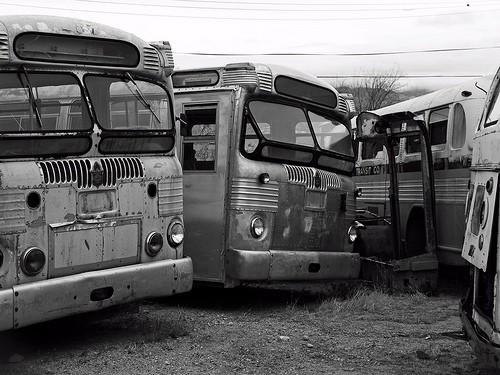Bus Brokers
