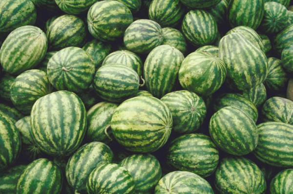 Wholesale Produce | Missouri | Anthony's Produce Inc