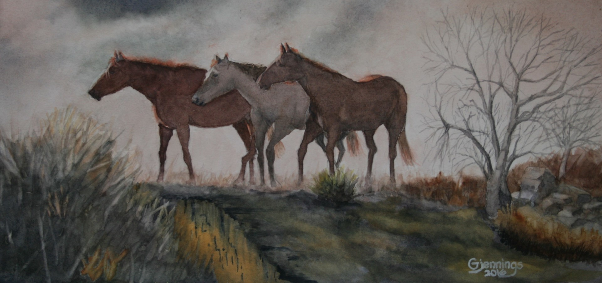 Three Horses on the Loose