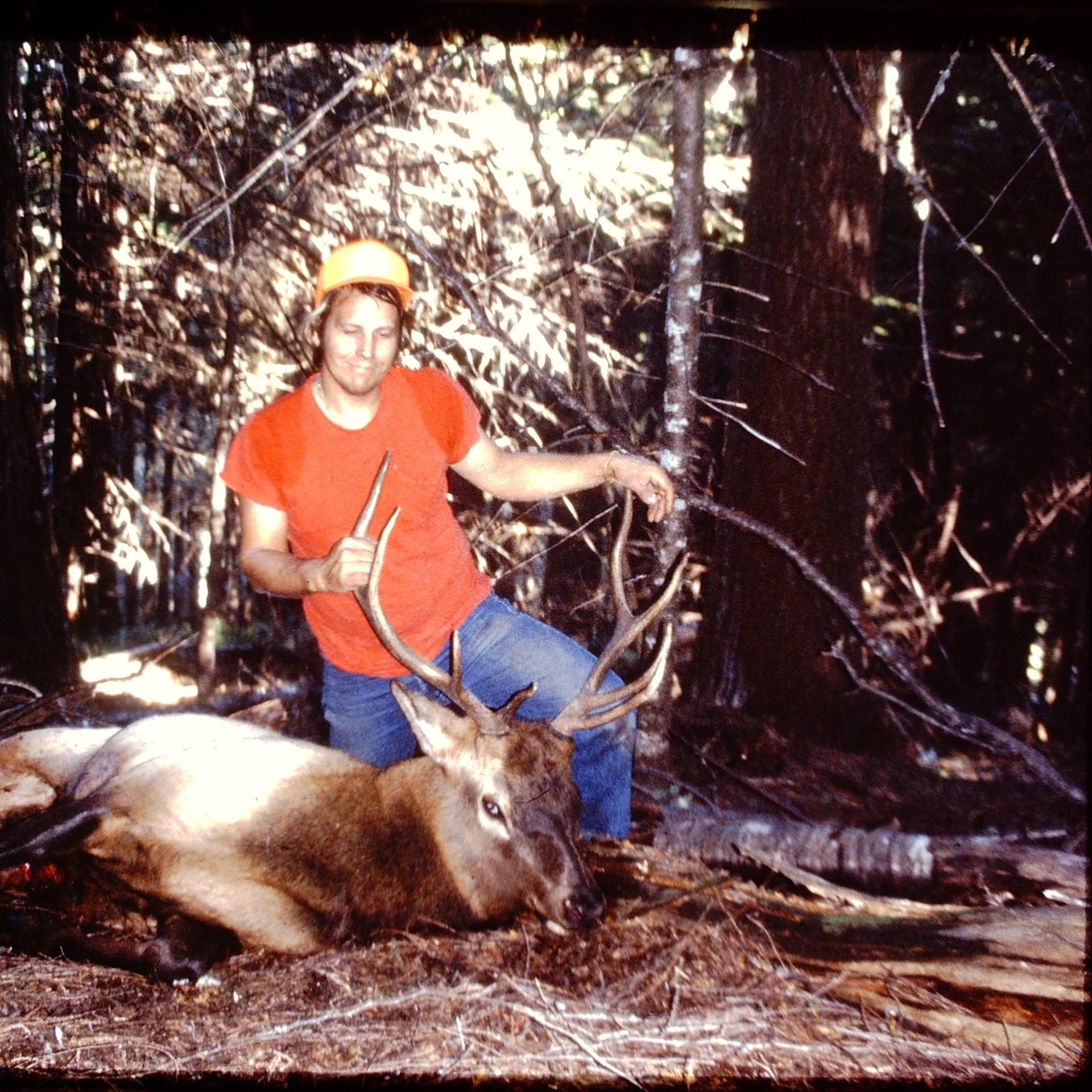Selway Elk 1989