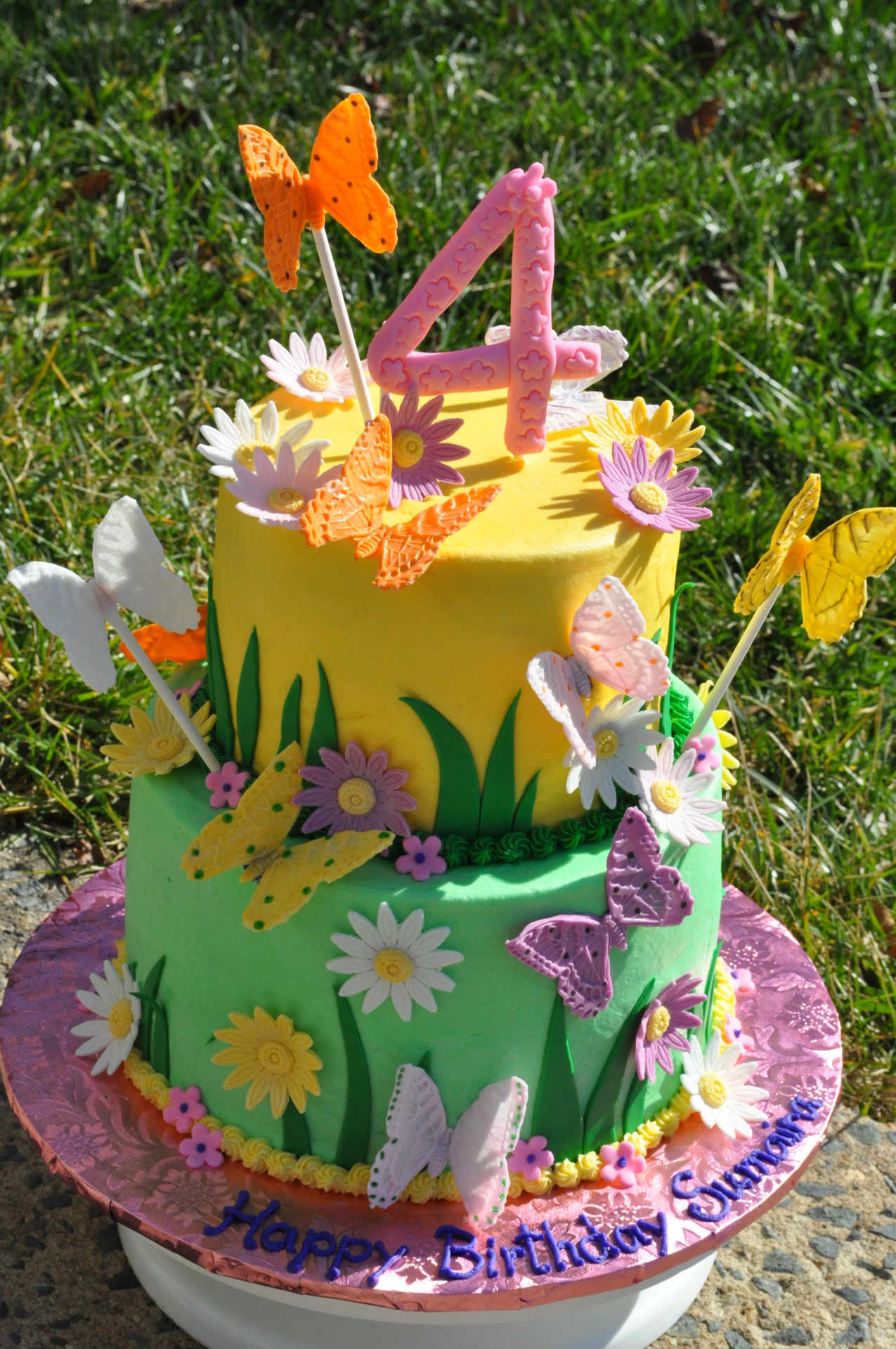 Butterfly birthday cake,spring theme cake