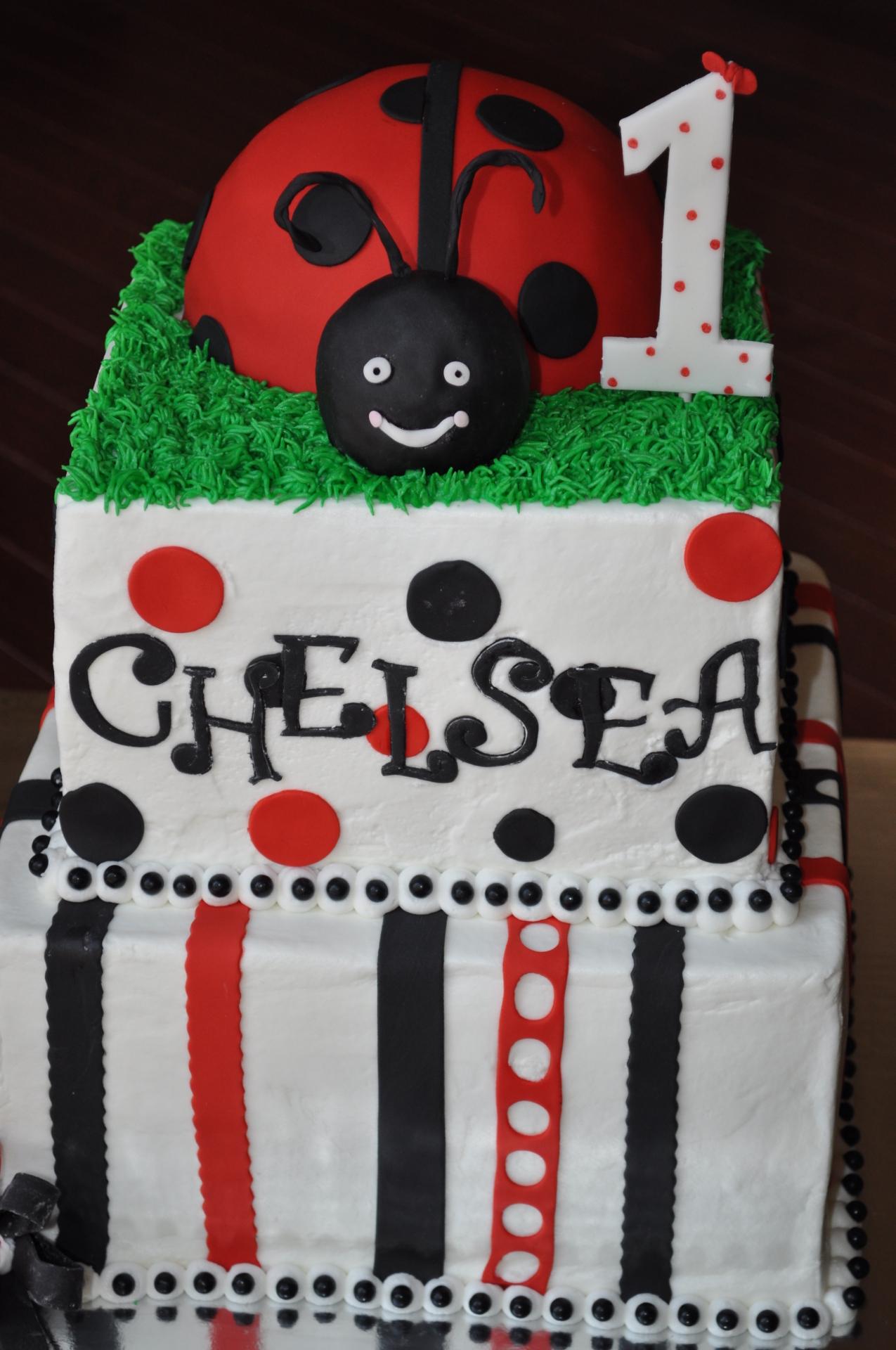 Ladybug cake, 1st birthday cake