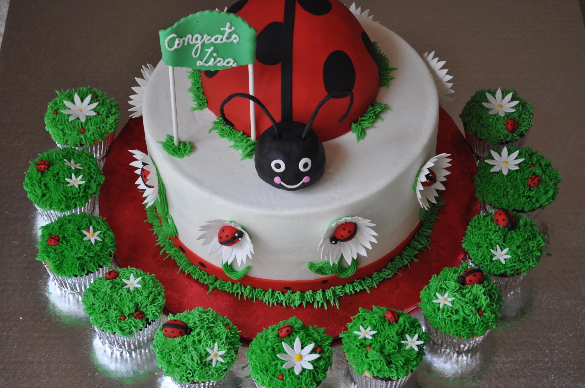 Ladybug baby shower cake cupcakes