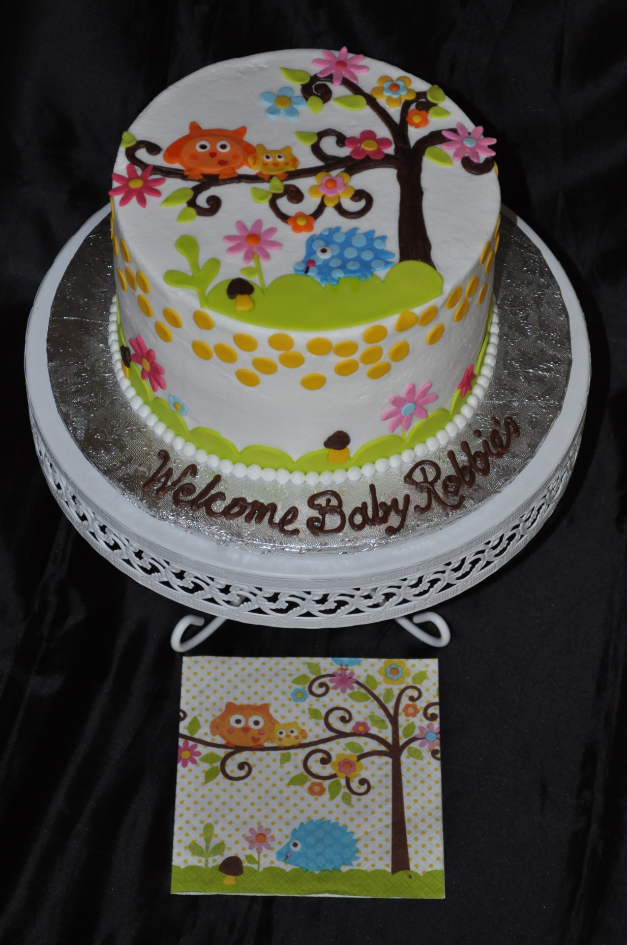 Owl baby shower to match napkins