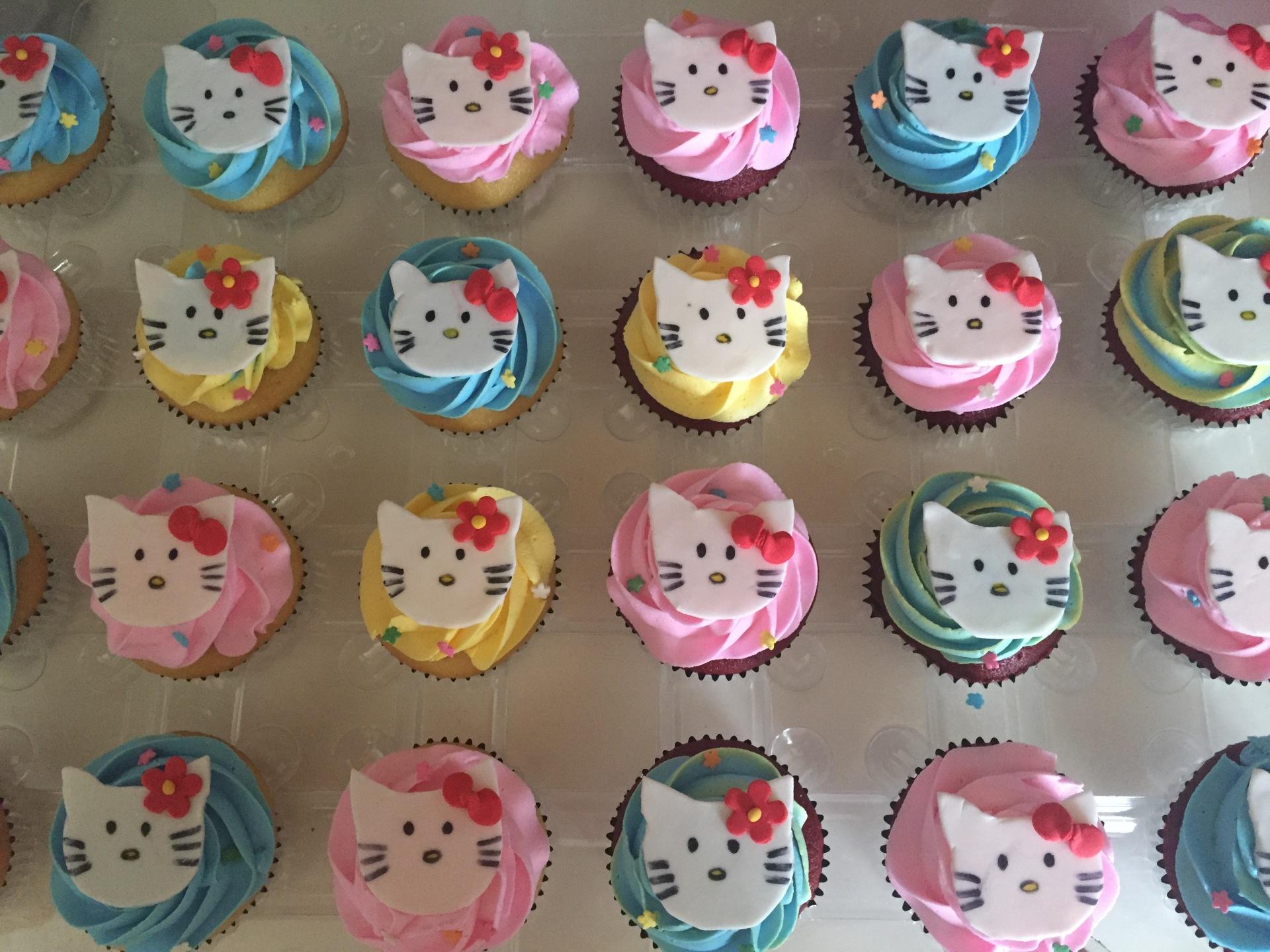 Hello Kitty multicolor