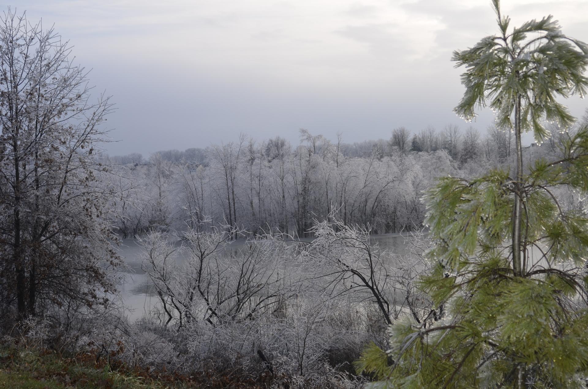 Ice Storm Pond
