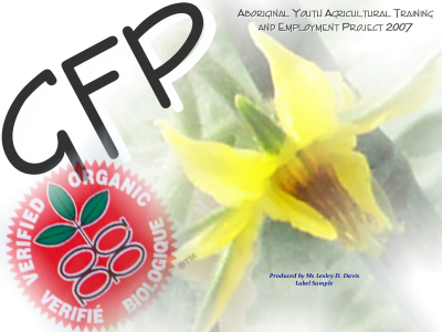 GFP - Greenhouse Food Productions