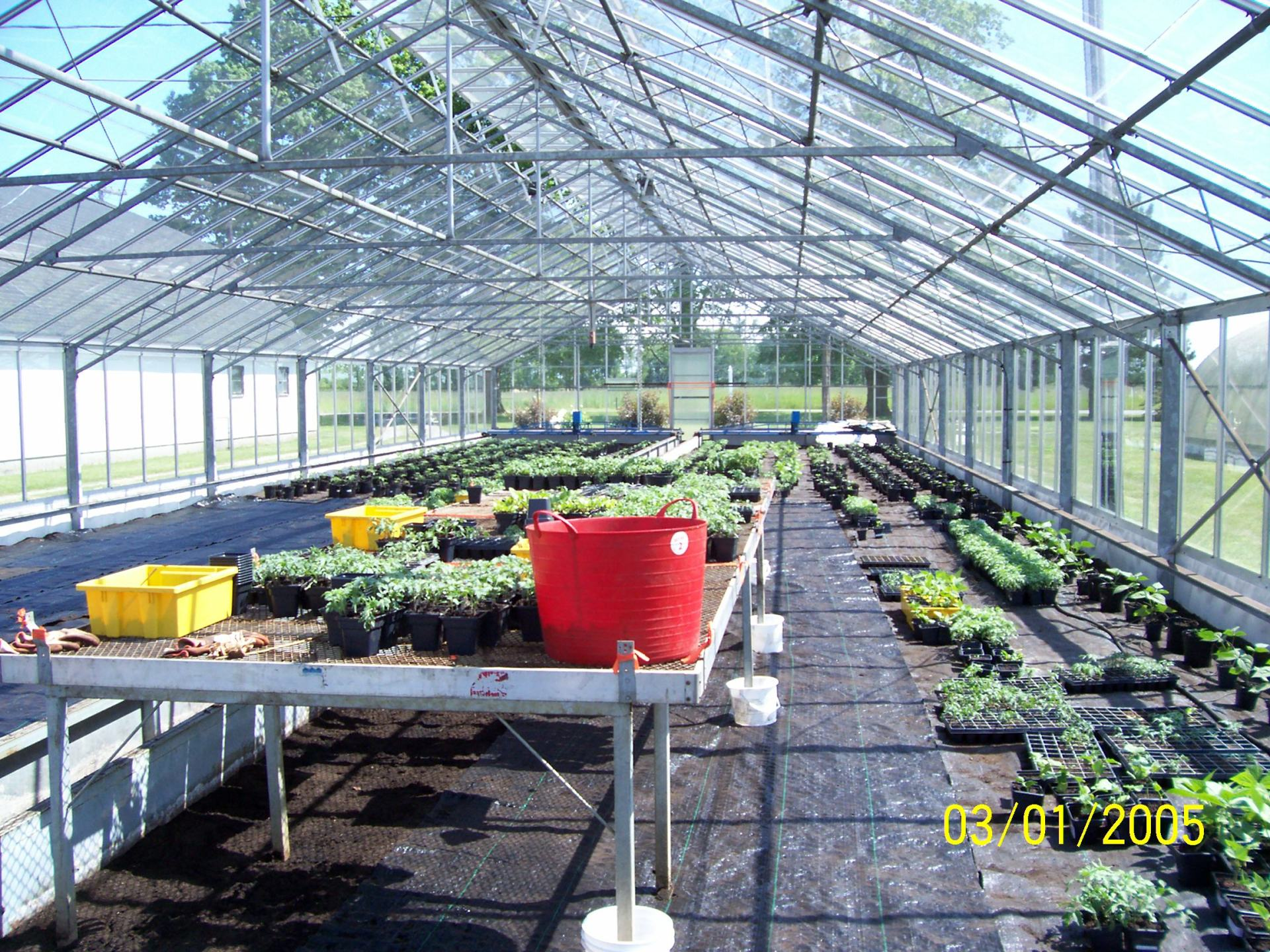 Greenhouse Food Productions 2009