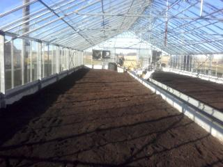 2009 Before Picture of Greenhouse