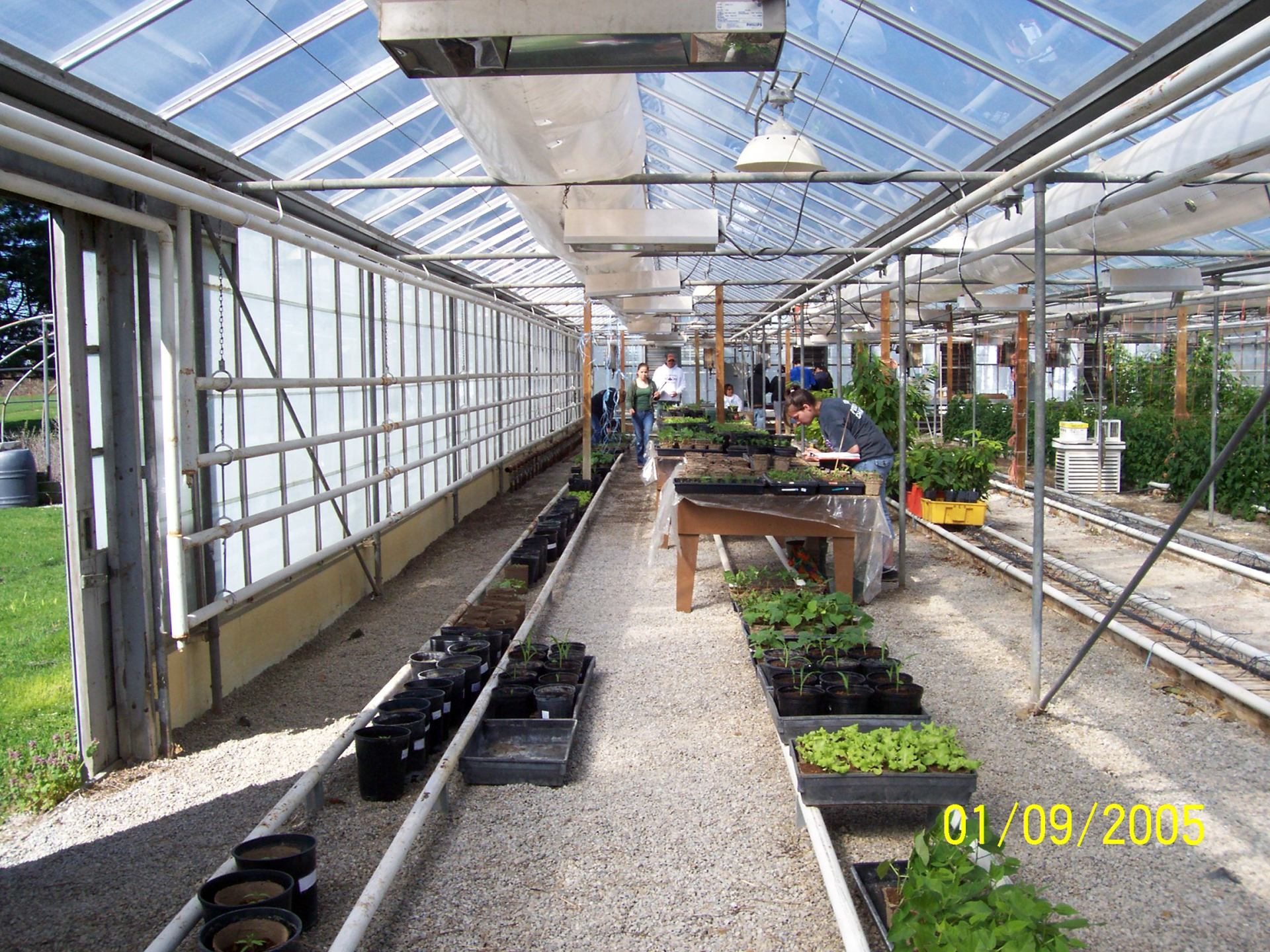 2007 GFP OMAFRA - Agriculture College - Training greenhouse
