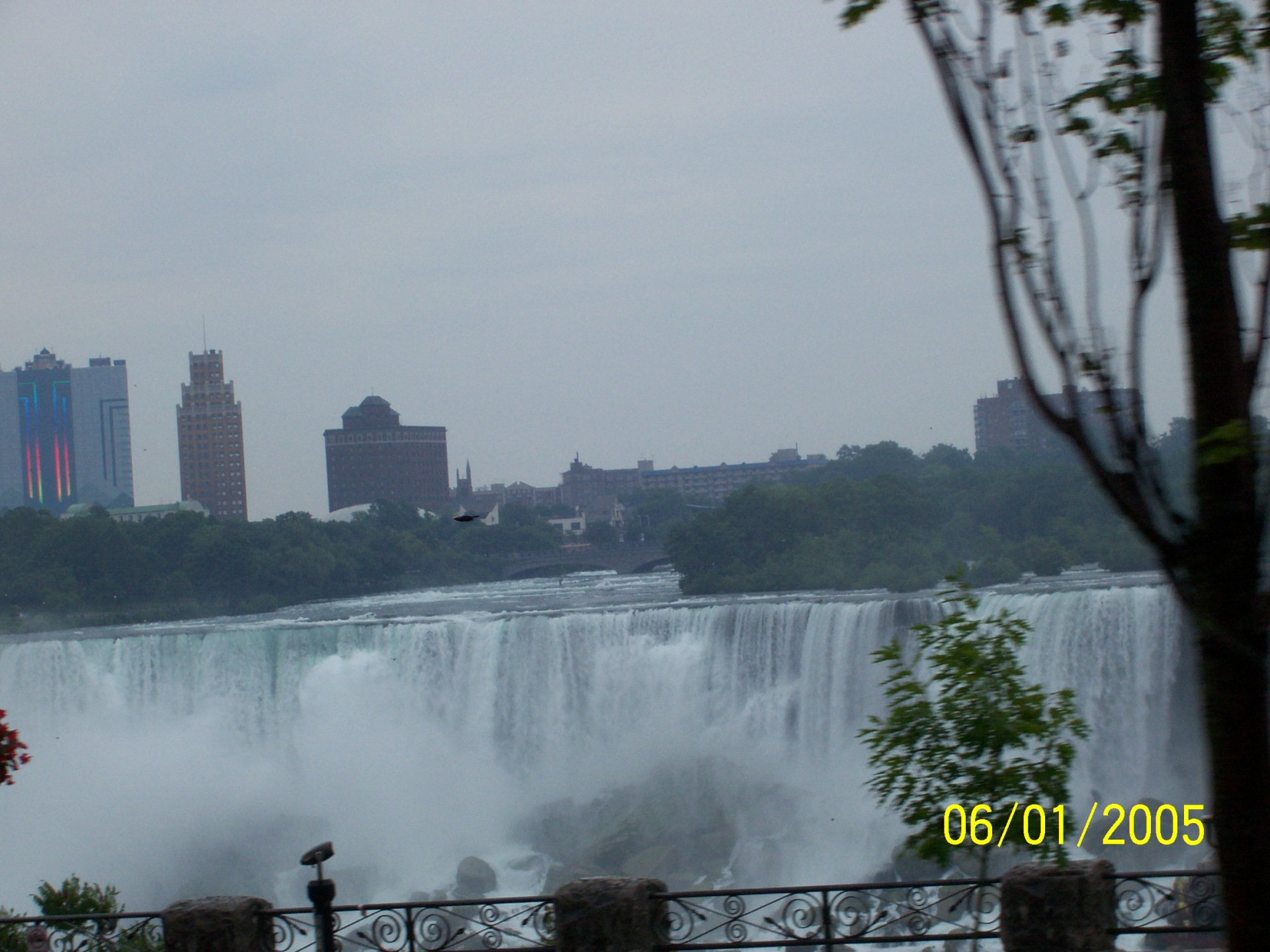Pictures from Academic Tour to Butterfly Conservatory Niagara Falls