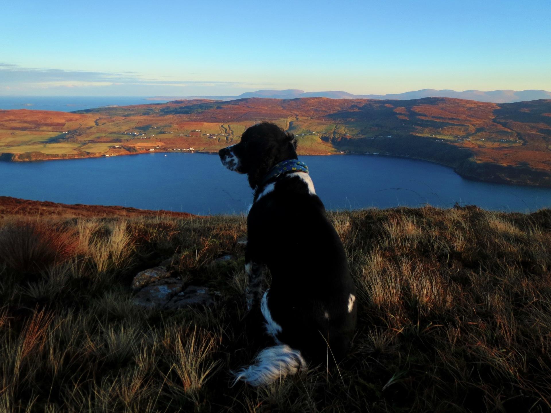 Rhumdog on top of the world