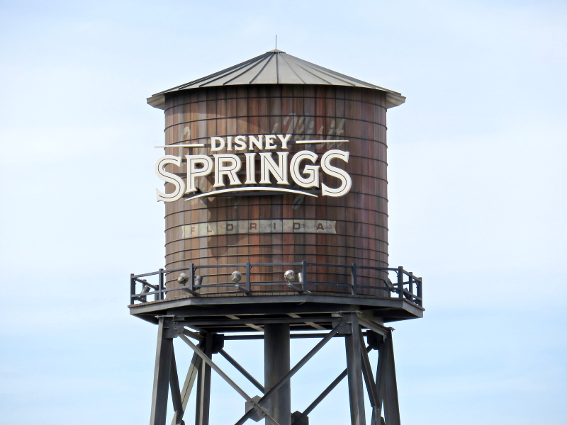 New D-Living Merchandise at Disney Springs