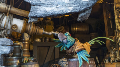Treasures Abound at Miss Adventure Falls at Disney's Typhoon Lagoon