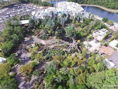 """Looks Ready to Me""  Pandora - World of Avatar New Aerials"