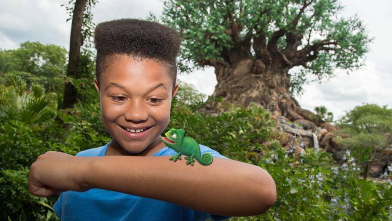 Exotic Magic Shots Available at Disney's Animal Kingdom