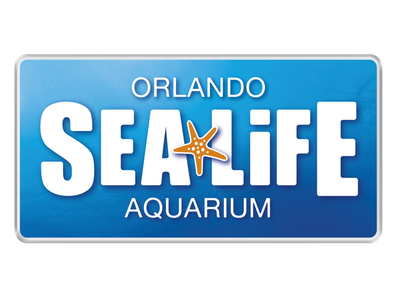 "SEA LIFE Orlando Aquarium gets Pied for a ""Porpoise""!"