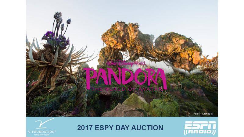 Help Raise Money for the V Foundation during the ESPY Day Auction